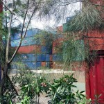 Sometimes security in the container yards consisted of light vegetation, and knowledge that nobody with any brains should be out walking where I was.